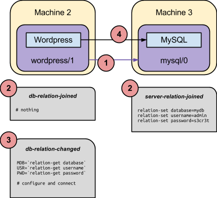 wordpress-mysql-relation-workflow